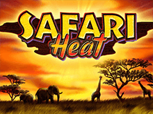 Safari Heat - автоматы 777